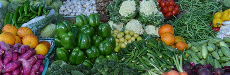 Grønnsak
