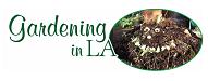 gardening in la