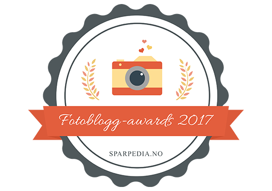 Fotoblogg-awards  2017