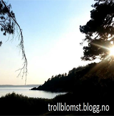Best Nordic Technology Blogs 2018 @trollblomst.blogg.no